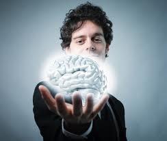 brain function supplement